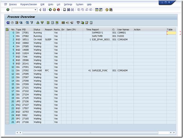 SAP Transaction Code SM51