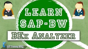Learn SAP BEx Analyzer Course