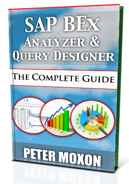 SAP BEx Analyzer Book