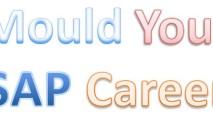http://www.saptraininghq.com/wp-content/uploads/2013/08/SAP-Career-213x120.jpg