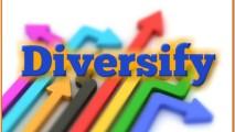 http://www.saptraininghq.com/wp-content/uploads/2013/09/Diversify-213x120.jpg