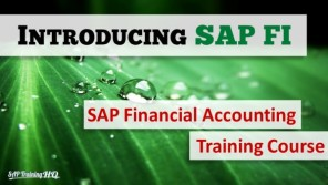 SAP Finnancial Accounting Course