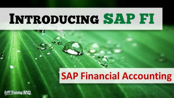 Learn SAP Finacial Accounting and controlling