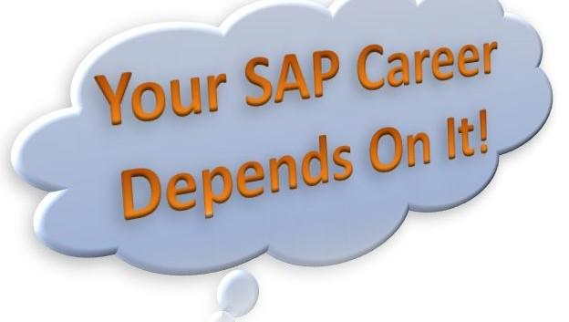 https://www.saptraininghq.com/wp-content/uploads/2013/08/Your-SAP-Career-Depends-On-It-624x353.jpg
